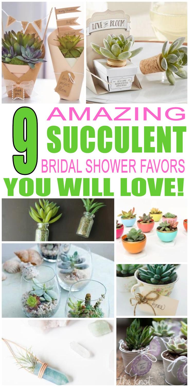 Succulent Bridal Shower Party Favors