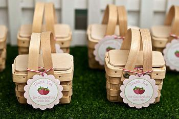 Mini Picnic Basket Favor Idea